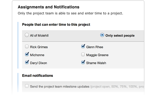 Assigning team members to specific projects